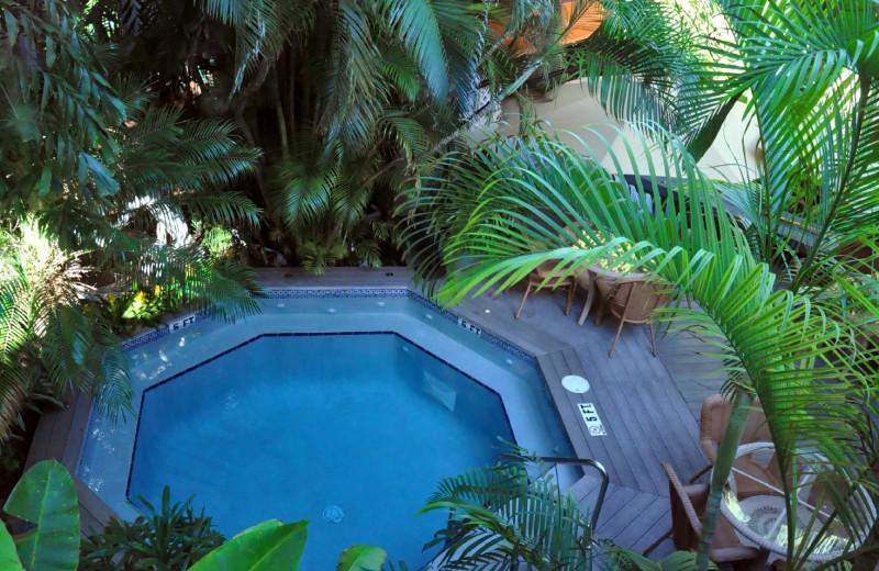 Pool at Mermaid & Alligator Key West.