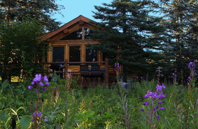 Cabin exterior at Bear Paw Adventure.