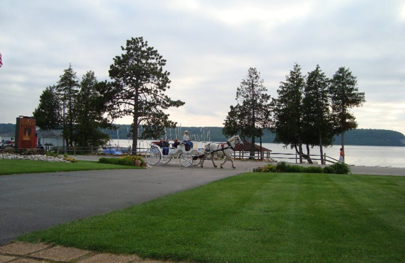 Horse carriage at  Pine Grove Resort.