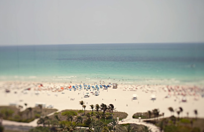 The beach at Shelborne Beach Resort.