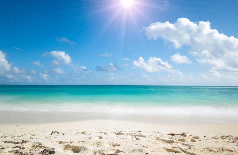 Beach at Beso Del Sol Resort.