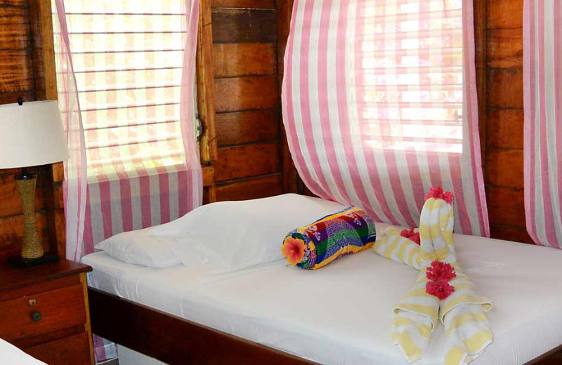 Guest room at Ranguana Lodge and Reef Resort.