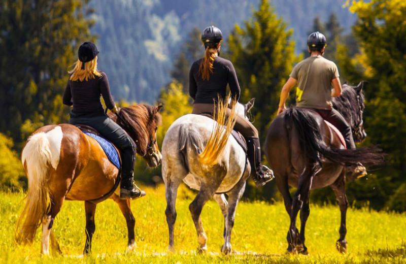 Horseback riding at Madden's on Gull Lake.