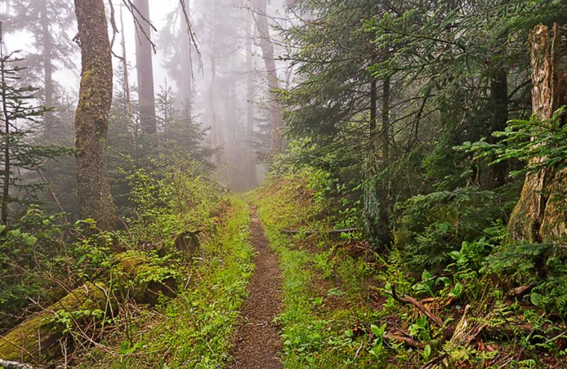 Hiking at Old Creek Lodge.