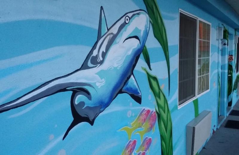 Shark mural at Aqua Breeze Inn.