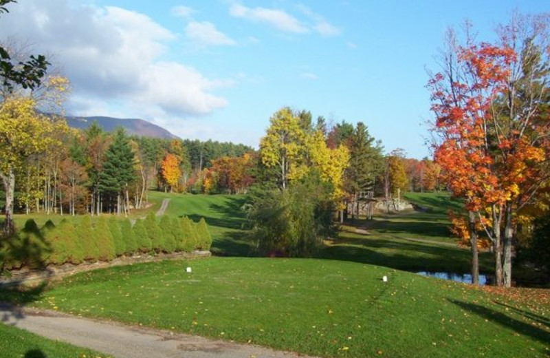 Golfing at Blackhead Mountain Lodge & Country Club