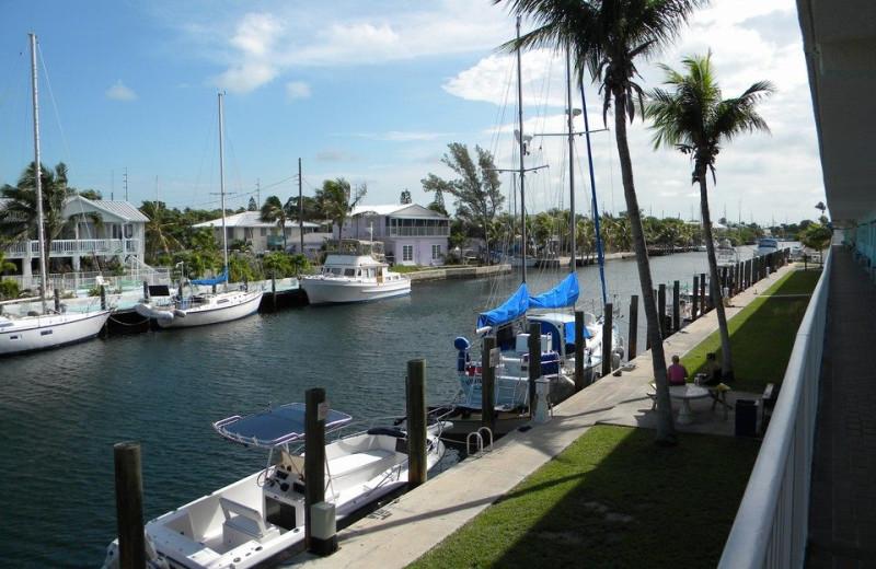 The Marina at Sombrero Resort & Marina.