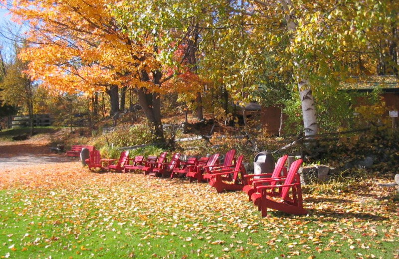 Lounging at Skycroft Campsites & Cottages