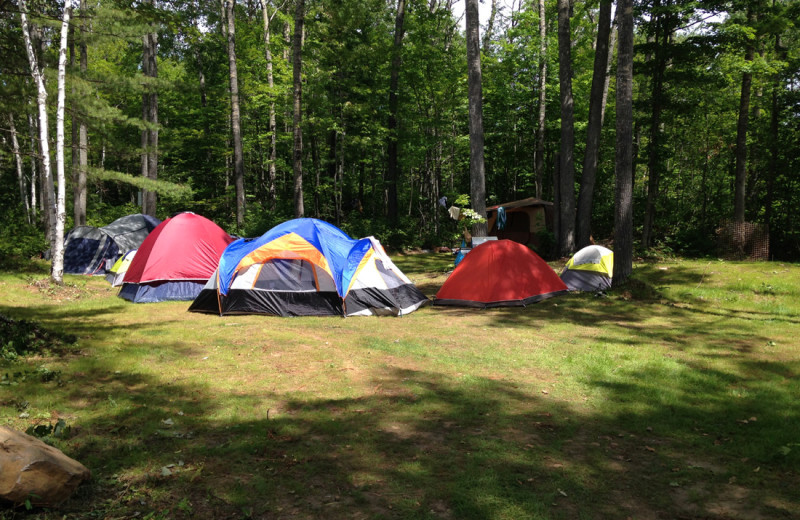 While not a campground, you will find camping at Footprints very rewarding!