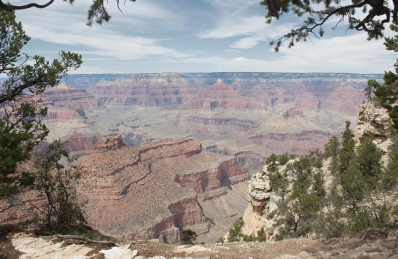Grand Canyon near Abbey Inn