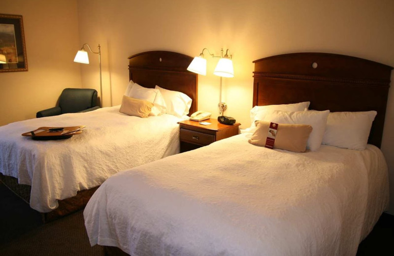 Guest room at Hampton Inn Springfield-South.