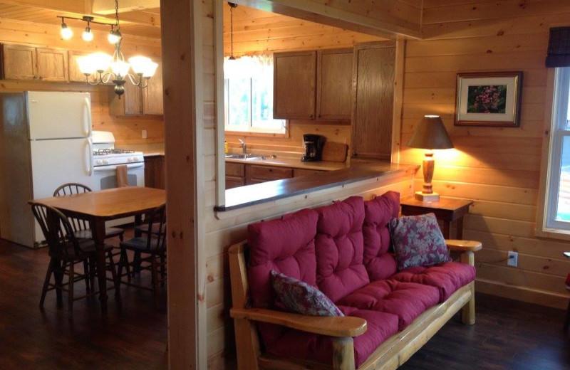 Cabin kitchen at Fernleigh Lodge.