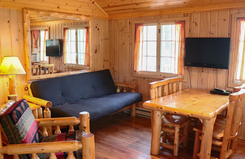 Cabin living room at Wilderness Resort Villas.