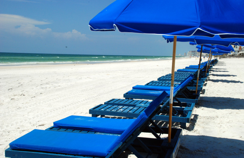 Beach chairs and umbrellas at Sterling Resorts.