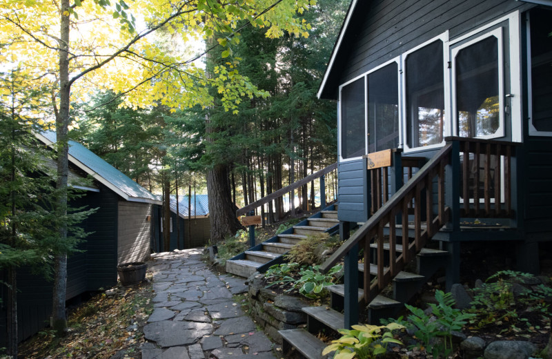 Cabins at Bartlett Lodge.