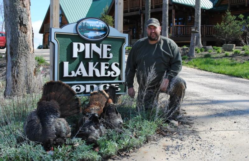 Hunting turkey at Pine Lakes Lodge.