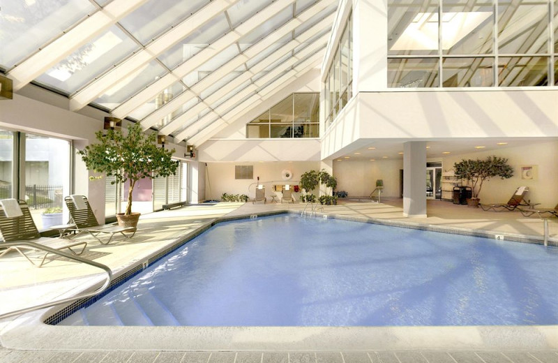 Indoor pool at Sheraton Detroit Novi.
