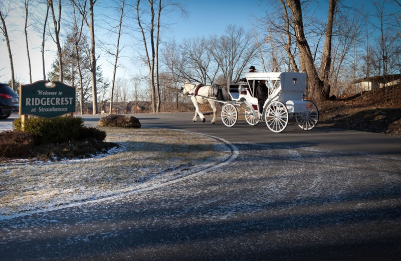 Wedding carriage at Stroudsmoor Country Inn.