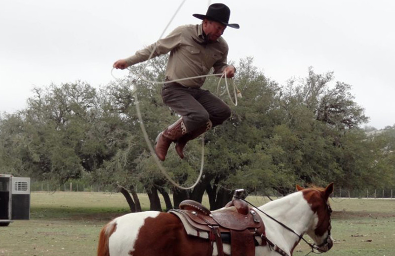 Horse tricks at Silver Spur Guest Ranch.