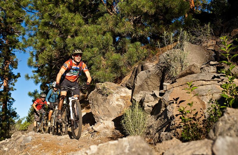 Mountain biking trails through Sunriver and Deschutes National Forest