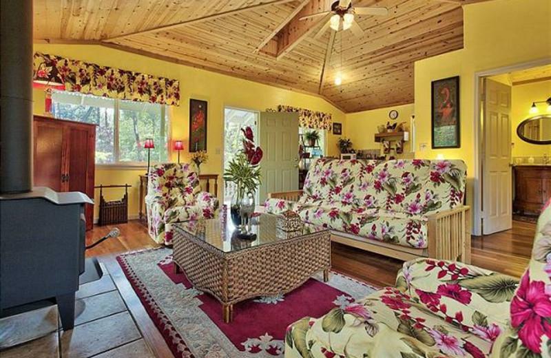 Vacation rental living room at Big Island Vacation Rentals.