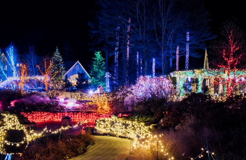Christmas lights at Harbour Towne Inn on the Waterfront.