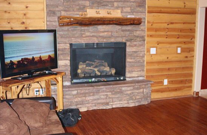 Fireplace in Tall Pines Getaway Living Room