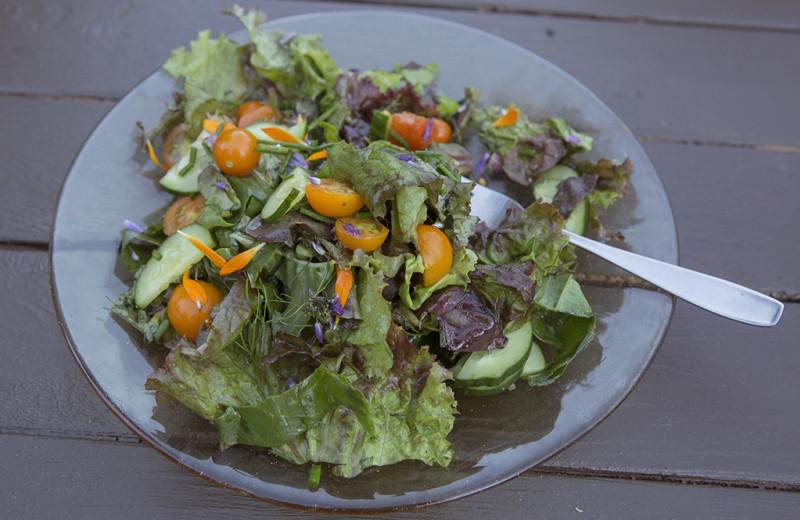Salad at Pebble Cove Farm.