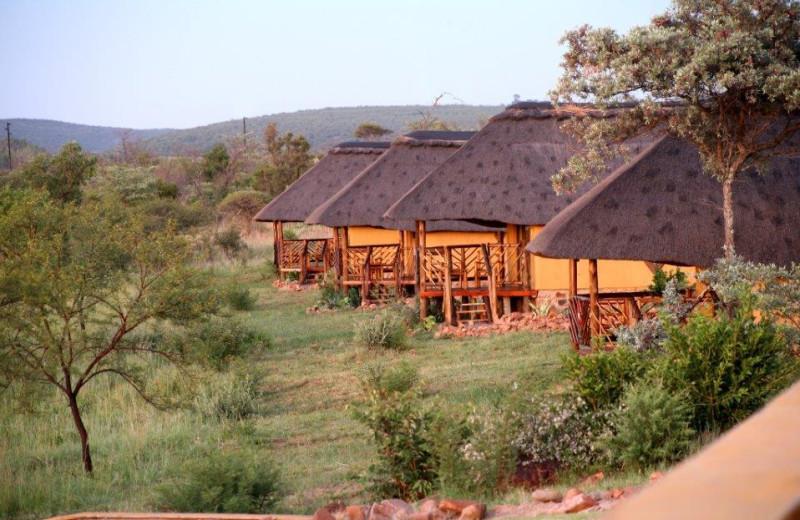 Exterior view of Tilodi Wilderness.
