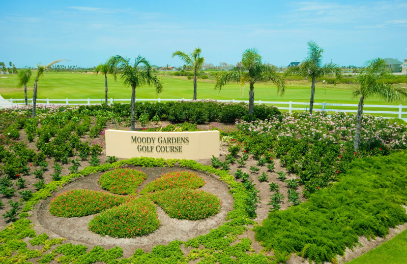 Moody Garden's is Galveston's premier public golf course, and it's open seven days a week. The course features Paspalum turf, designed for seaside golf courses and provides an outstanding playing surface. The course highlights its unique seaside tropical feel with 18 holes meandering through upland and lowland native areas, natural wetlands habitat of beautiful Sydnor Bayou and over 500 palm trees. The sub-tropical temperatures and mild gulf breezes combine to form a delightful atmosphere for your next golf trip on Galveston Island in Texas.