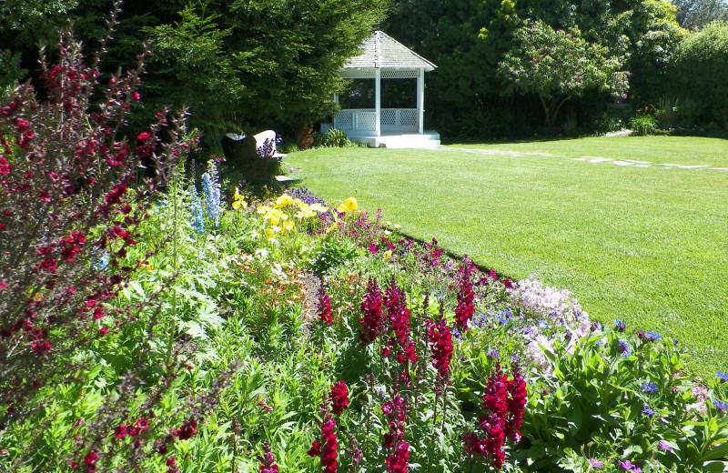 Garden gazebo at Cambria Pines Lodge.