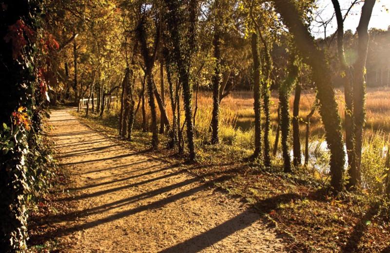 Trail at Smithfield Station.