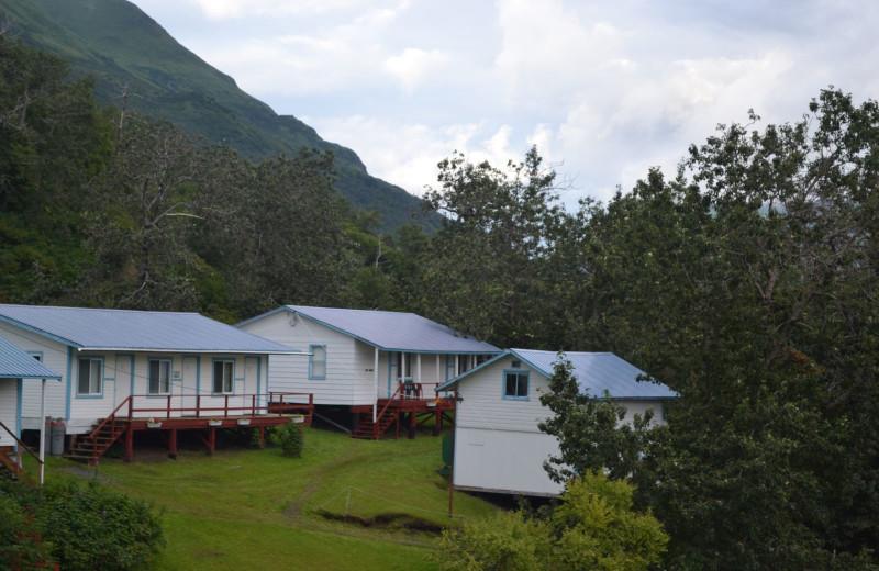 Cabins at Zachar Bay Lodge.