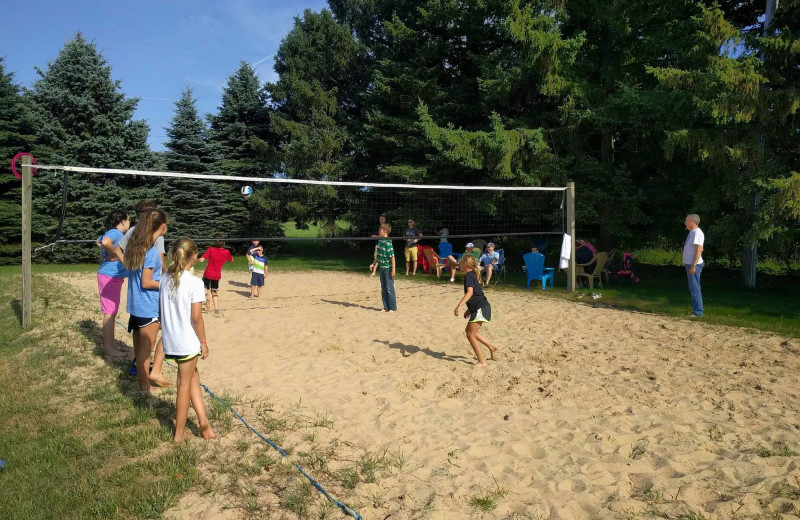 Volleyball court at Hop & Vine Inn.