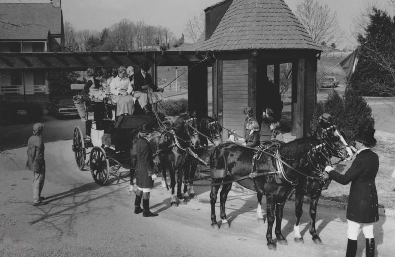 Historic photos of Boar's Head Resort.