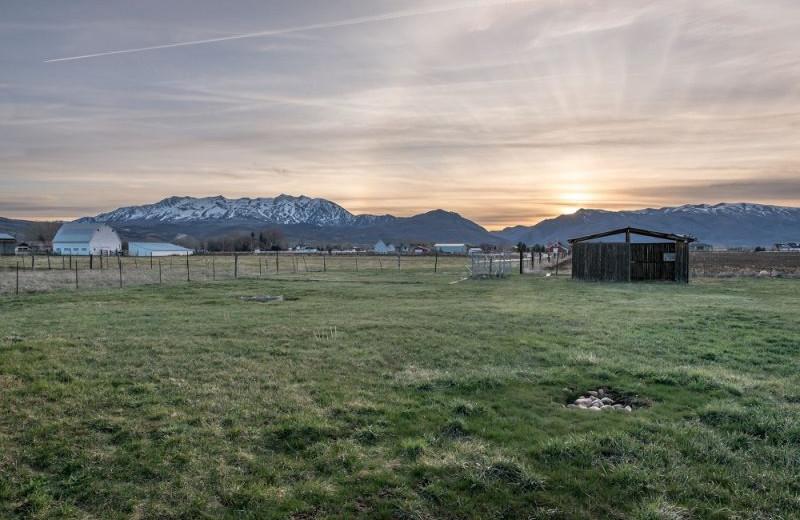 Scenic view at Lakeside Resort Properties.