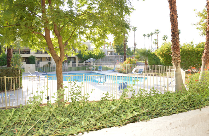 Rental pool at Padzu Vacation Homes - Palm Springs