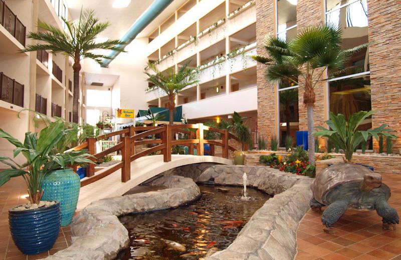 Fish pond at Quality Inn Oceanfront Ocean City.