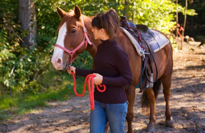 Horseback riding at Terramesa Hospitality Group.