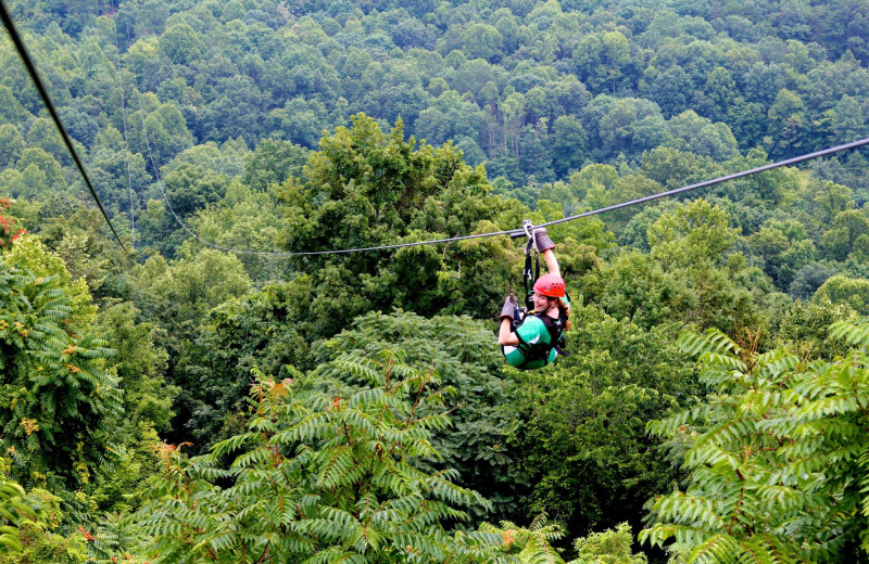 Zip line at Country Road Cabins.