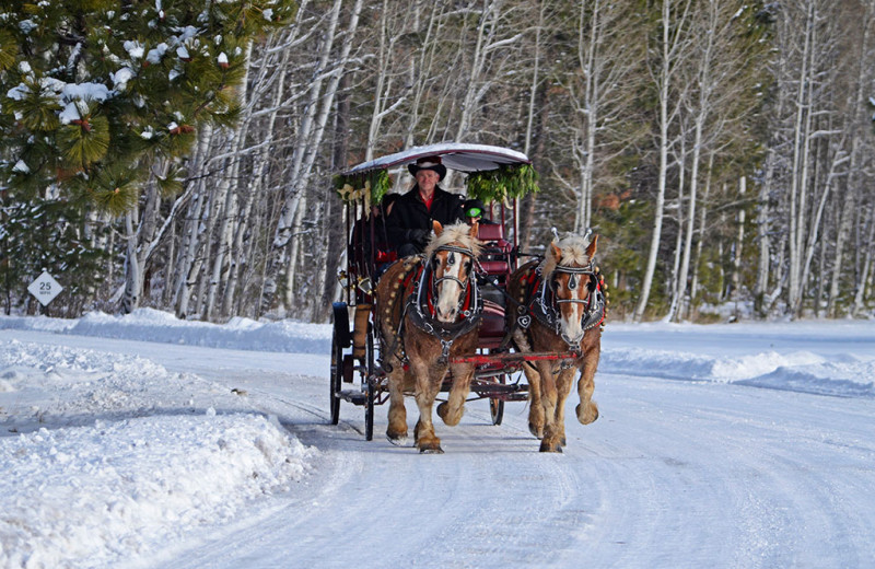 Sleigh ride at Black Butte Ranch.