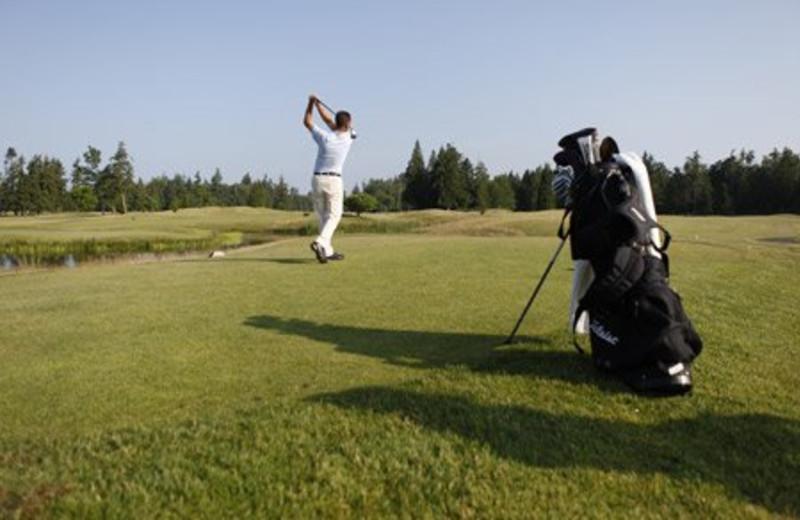 Golfing at Semiahmoo Resort