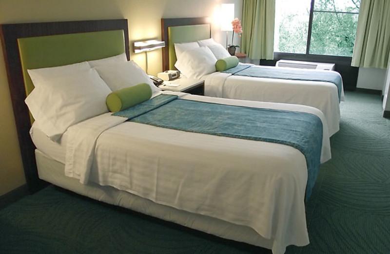 Guest room at SpringHill Suites Austin Northwest.