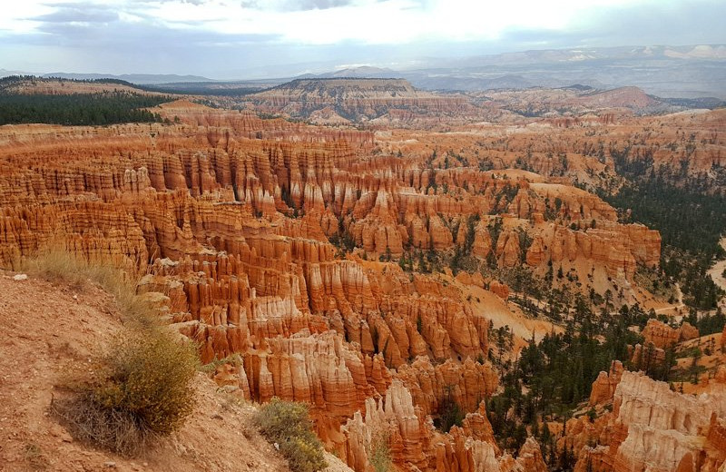 Bryce Canyon National Park near Marianna Inn.