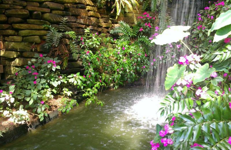 Garden waterfall at Callaway Gardens.