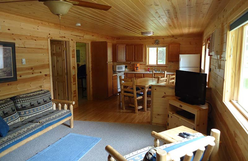 Cabin living room and kitchen at The Red Door Resort.