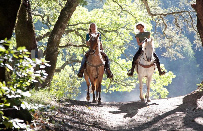 Horseback riding at Winter Clove Inn.