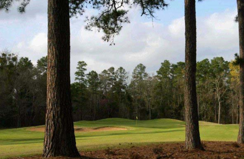 Golf course at Pine Dunes Resort and Golf Club.