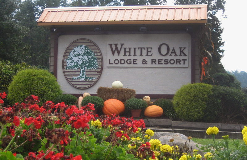 Garden at White Oak Lodge & Resort.