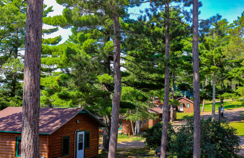 Cabins at Wilderness Resort Villas.